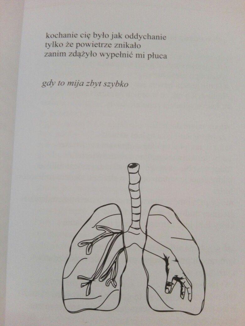 Rupi Kaur Slonce I Jej Kwiaty Polish Quotes Words Quotes