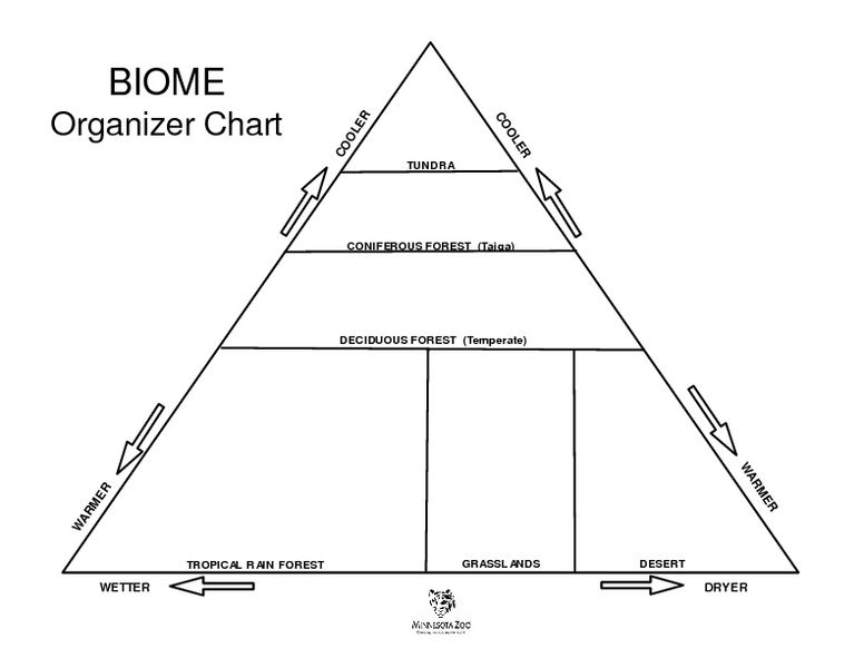 Worksheets Biome Worksheets biome organizer chart worksheet lesson planet life science planet