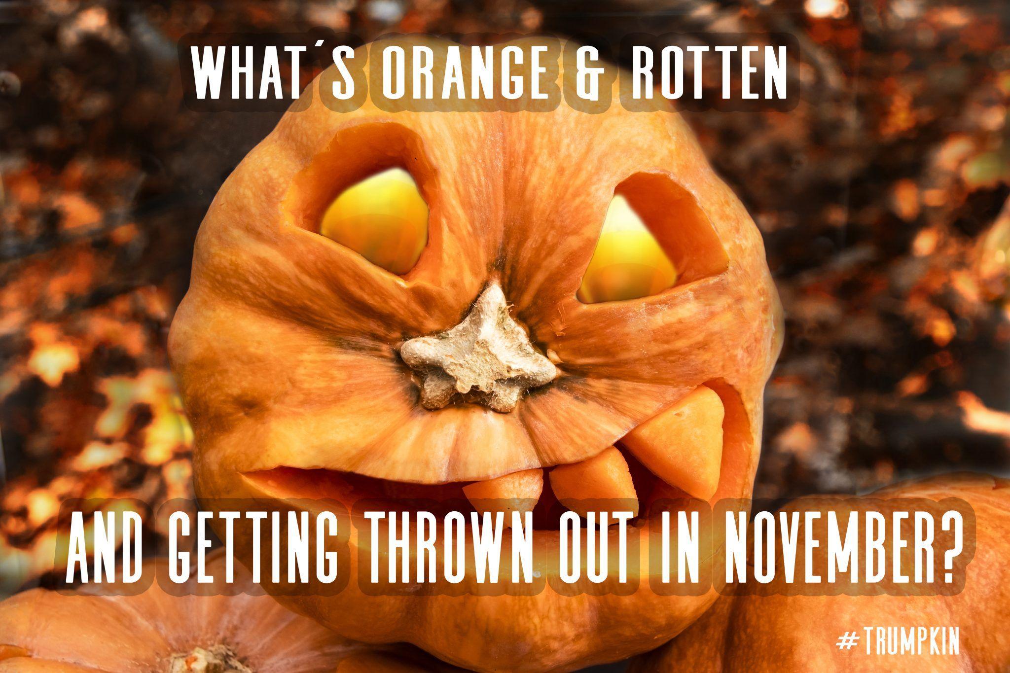 Happy Halloween Funny Memes 2020 Halloween Memes in 2020 | Halloween memes, Happy halloween meme
