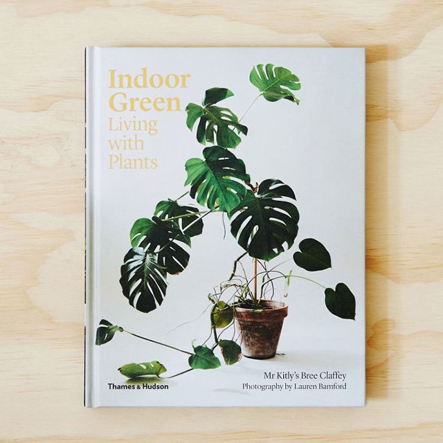 32be089dfddc6f0fe49d158b83ed9812 - Living With Plants A Guide To Indoor Gardening