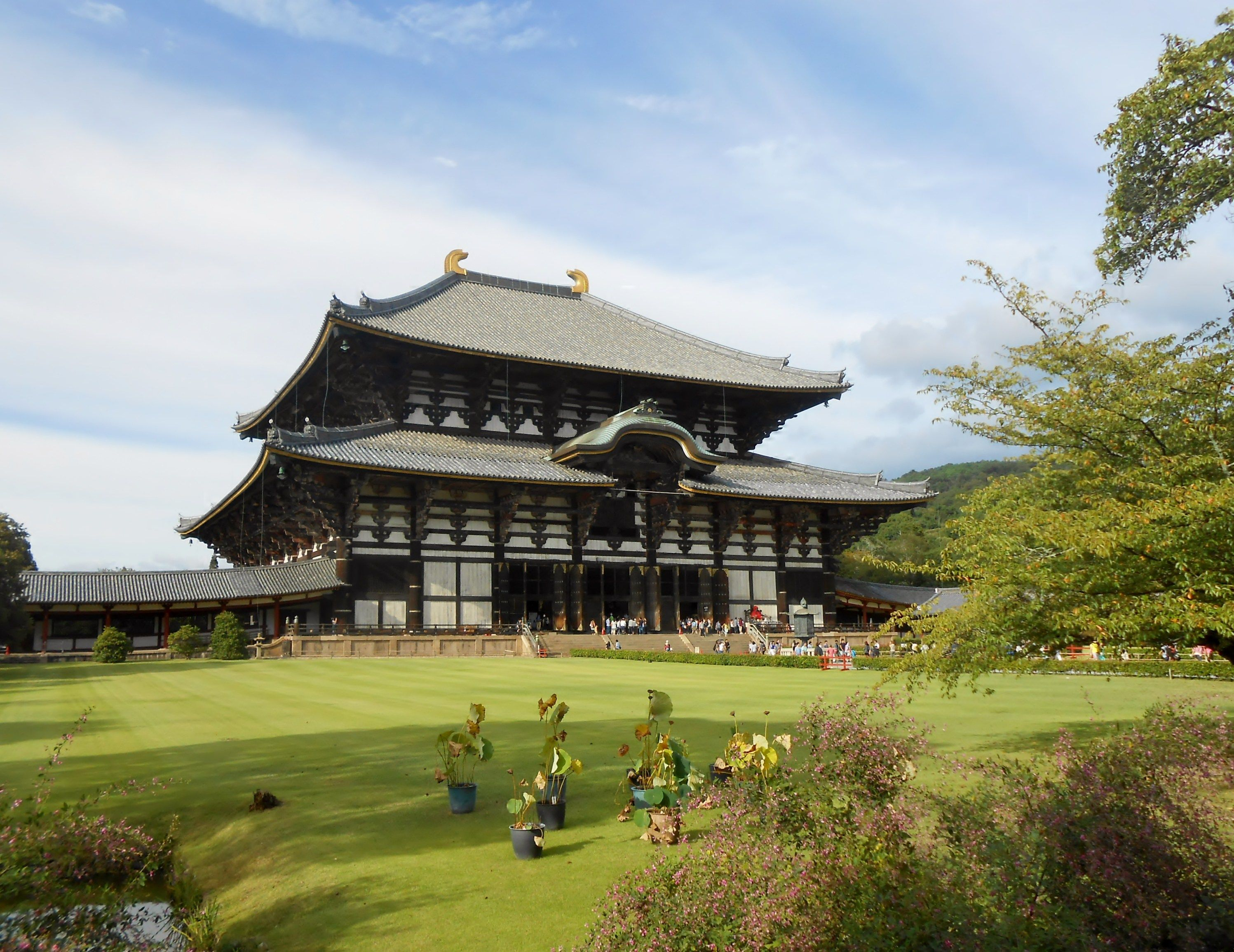 The great buddha temple of Nara, Todaiji