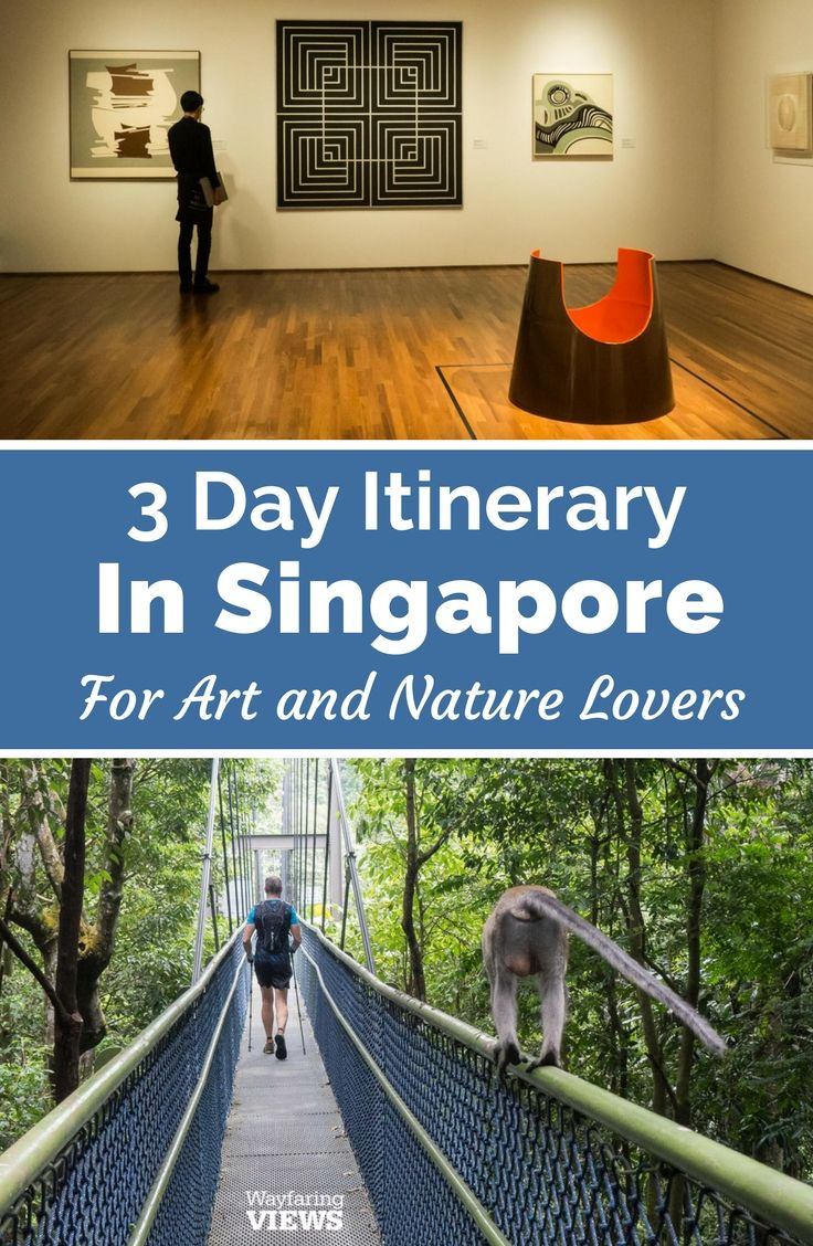 Jurong Falls In Singapore For The Best Art Food Culture And Travel In Singapore Head To Bit Ly Culturetripsingapore Waterfall Beautiful Nature Scenery
