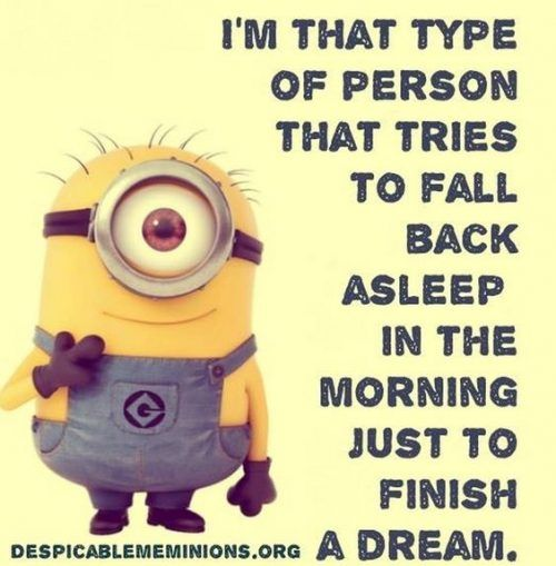 40 Funniest Minion Quotes and Sayings