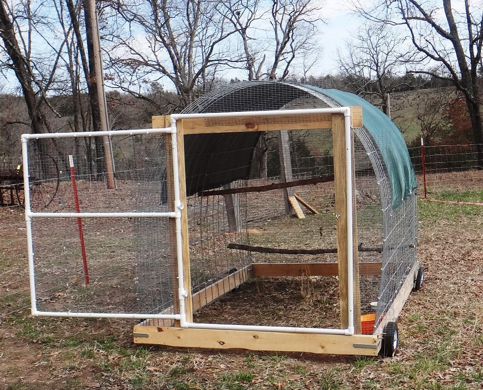 Blinegai The Turkey S New Mobile Unit Made From Two 4 High Cattle Panels A Simple Pvc Door Secured In The Op Cattle Panels Chicken Tractor Chickens Backyard