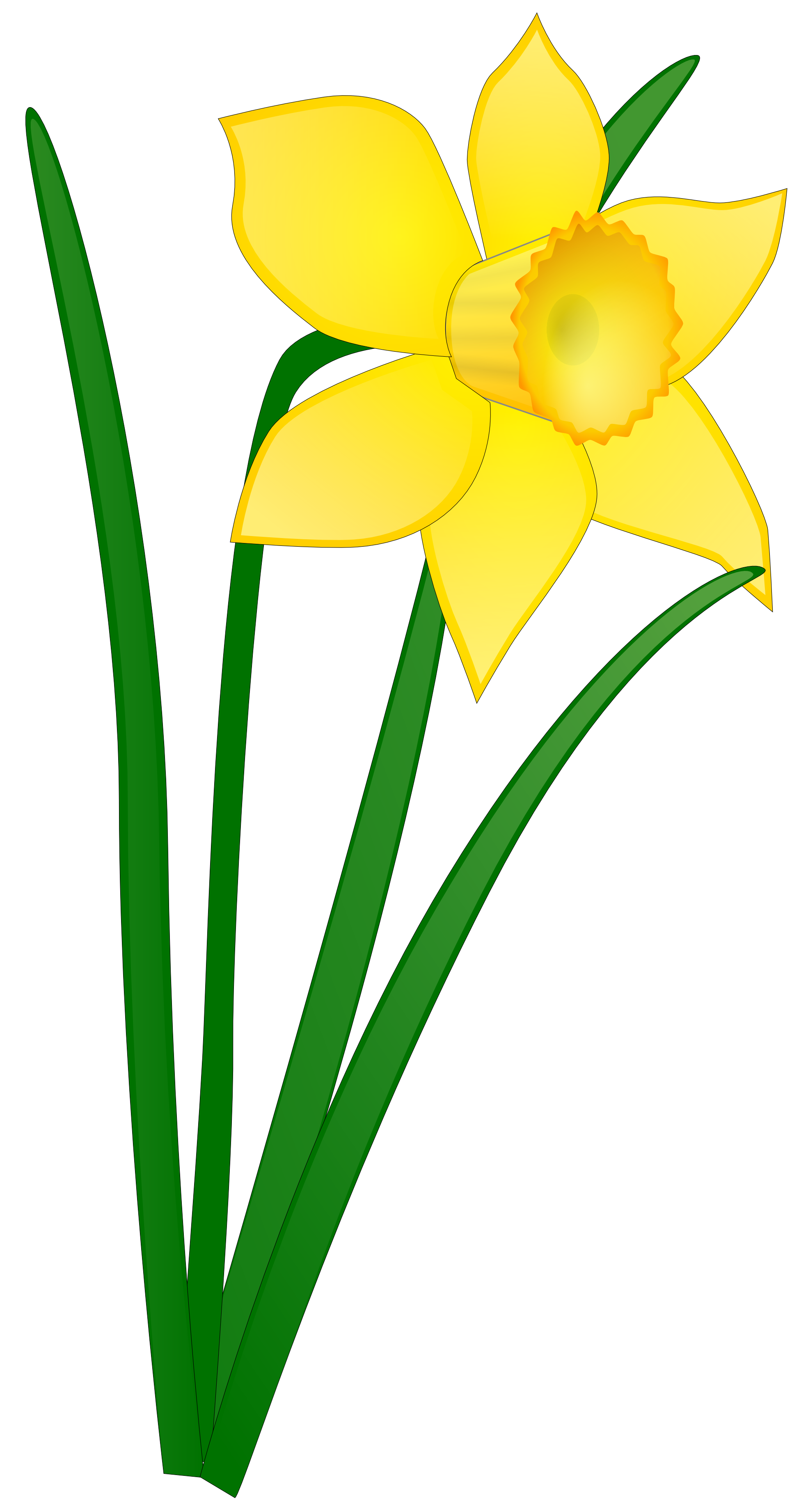 Daffodil Flower Clip Art Clipart Panda Free Clipart Images