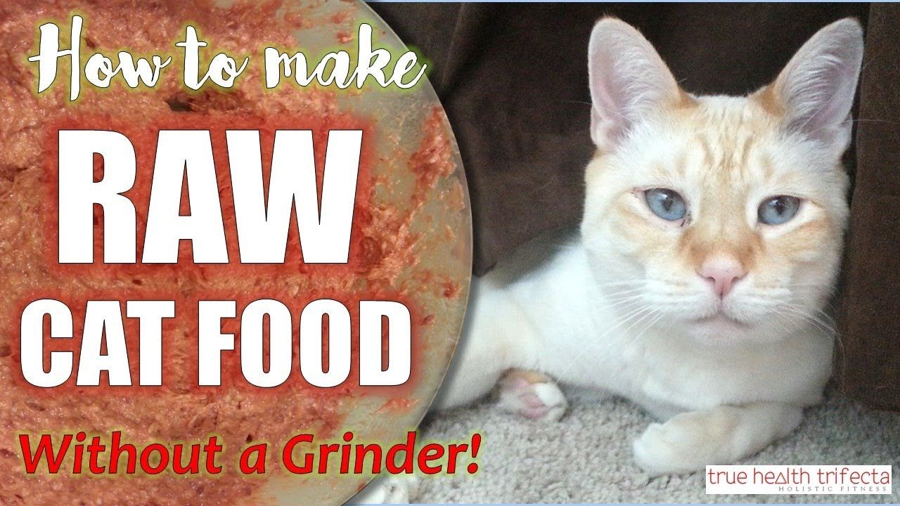 How to make Raw Cat Food WITHOUT a Grinder! (RECIPE