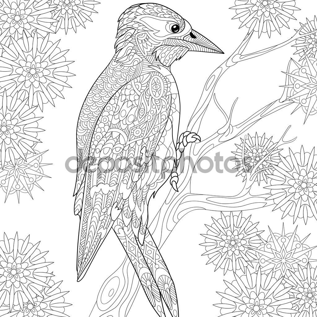 Descargar Zentangle Estilizado Pajaro Carpintero Ilustracion De Stock 111533814 Paginas Para Colorear De Animales Dibujos Paginas Para Colorear