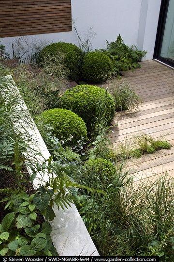 Abingdon Garden Designed By Sarah Price