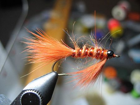 17 best images about carp flies on pinterest, Fly Fishing Bait