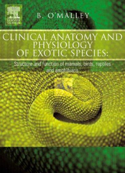 Clinical anatomy and physiology of exotic species pdf download e clinical anatomy and physiology of exotic species pdf download e book fandeluxe Choice Image