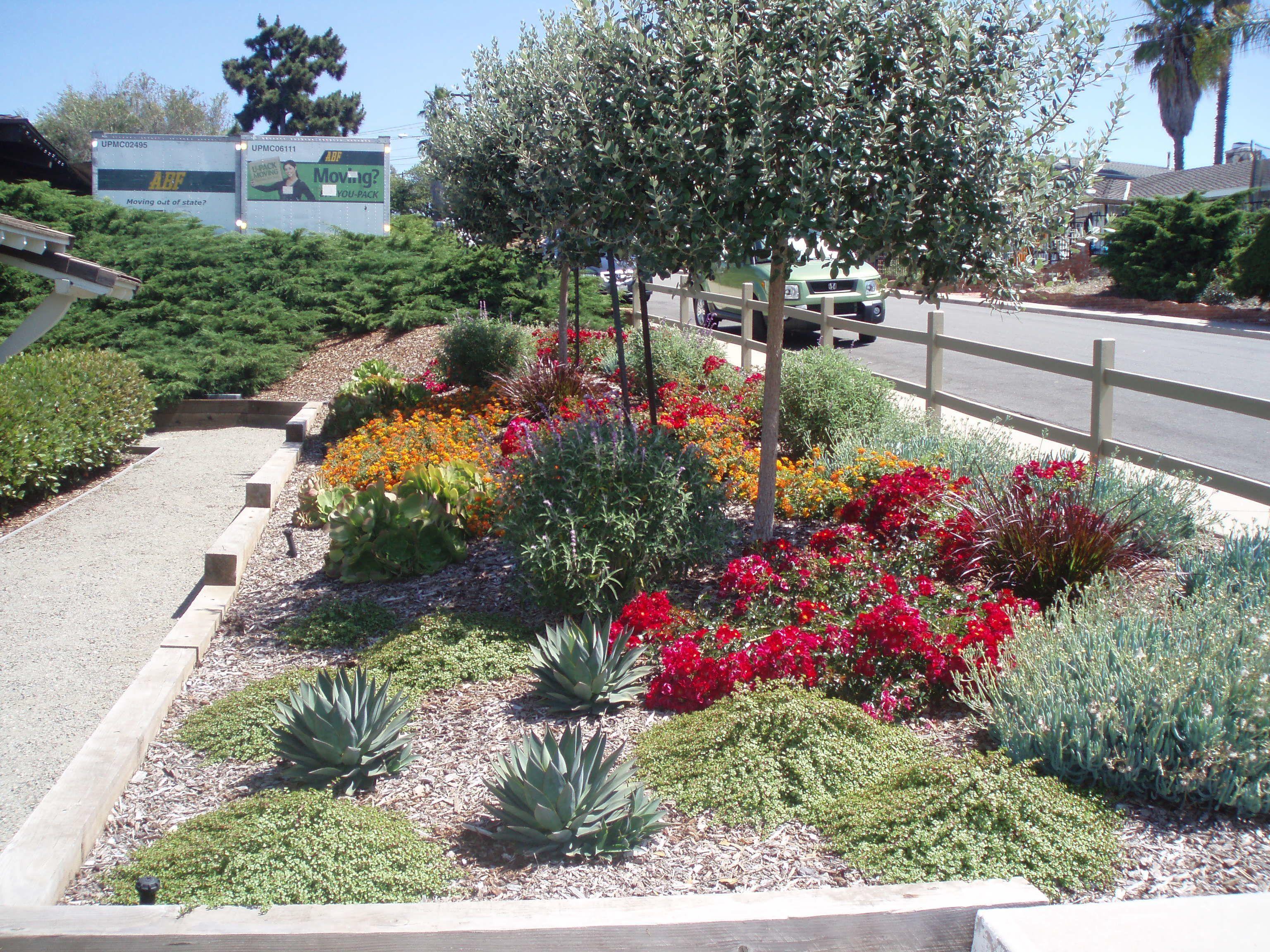 landscape designer susan rojas from waterwise botanicals designed