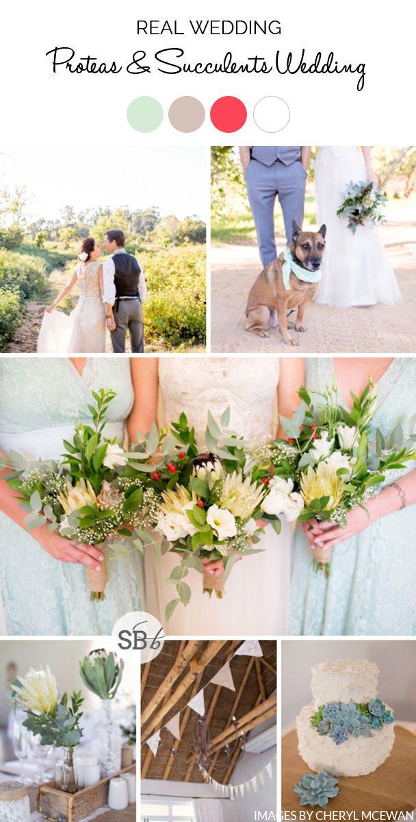 Proteas & Succulents Wedding by Cheryl McEwan | SouthBound Bride | http://www.southboundbride.com/proteas-succulents-wedding-at-in-the-vine-by-cheryl-mcewan-jenna-alan