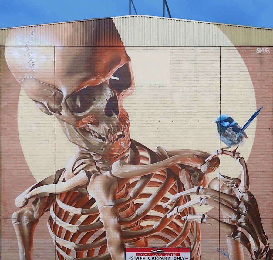 Street Artist Smug One beim australischen The Big Picture Fest Sam Bates in der StreetArtSzene besser als Smug oder Smug One bekannt ist ordentlich rumgekommen So hat er...