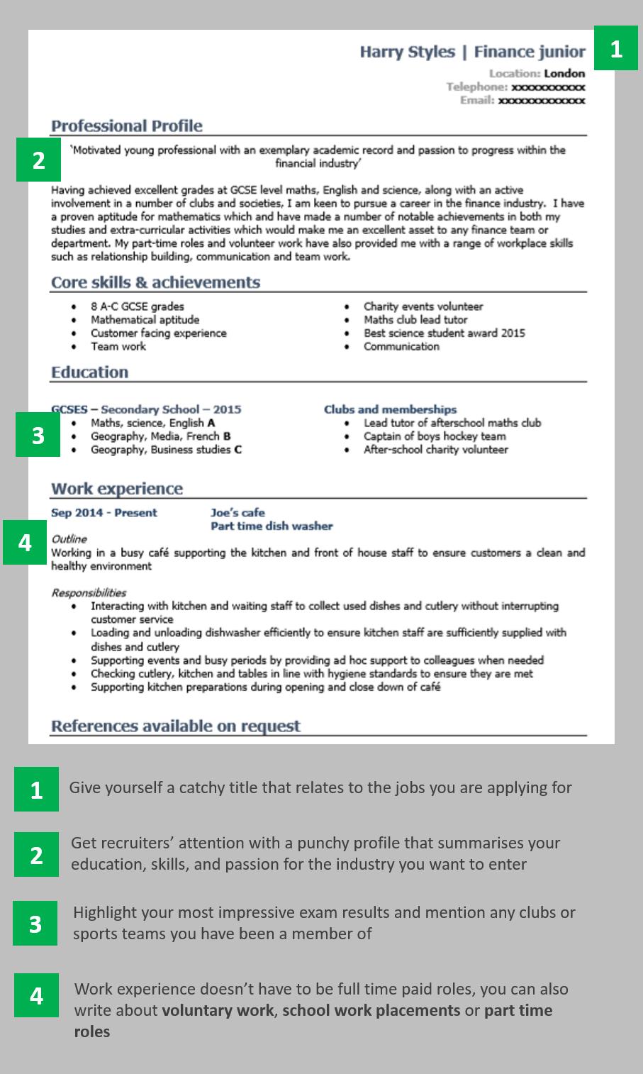Writing A Cv Cv Examples Professional Resume Examples