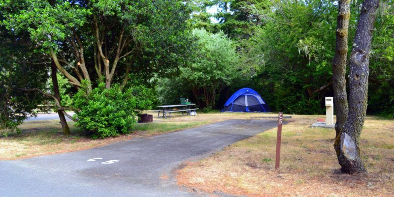 Bullards Beach Campground Closing Briefly In 2020 State Parks Tent Site Outdoor Enthusiasts
