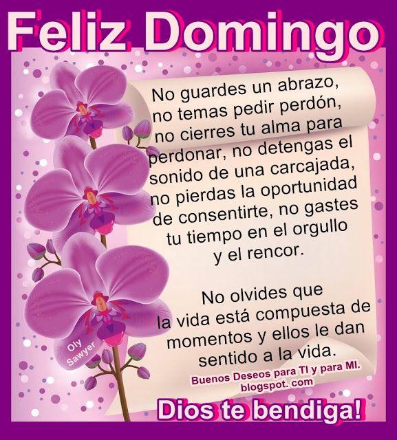 Feliz Domingo No Guardes Un Abrazo No Temas Pedir Perdon