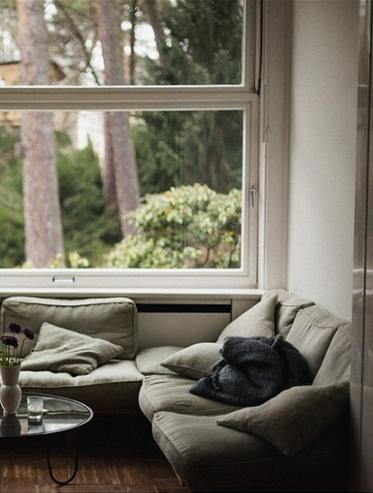big windows soft couches