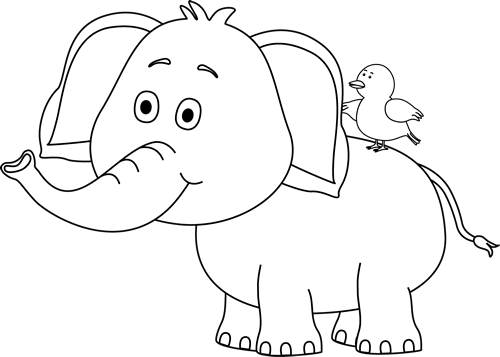 Black and White Elephant and Bird (With images) | Elephant ...