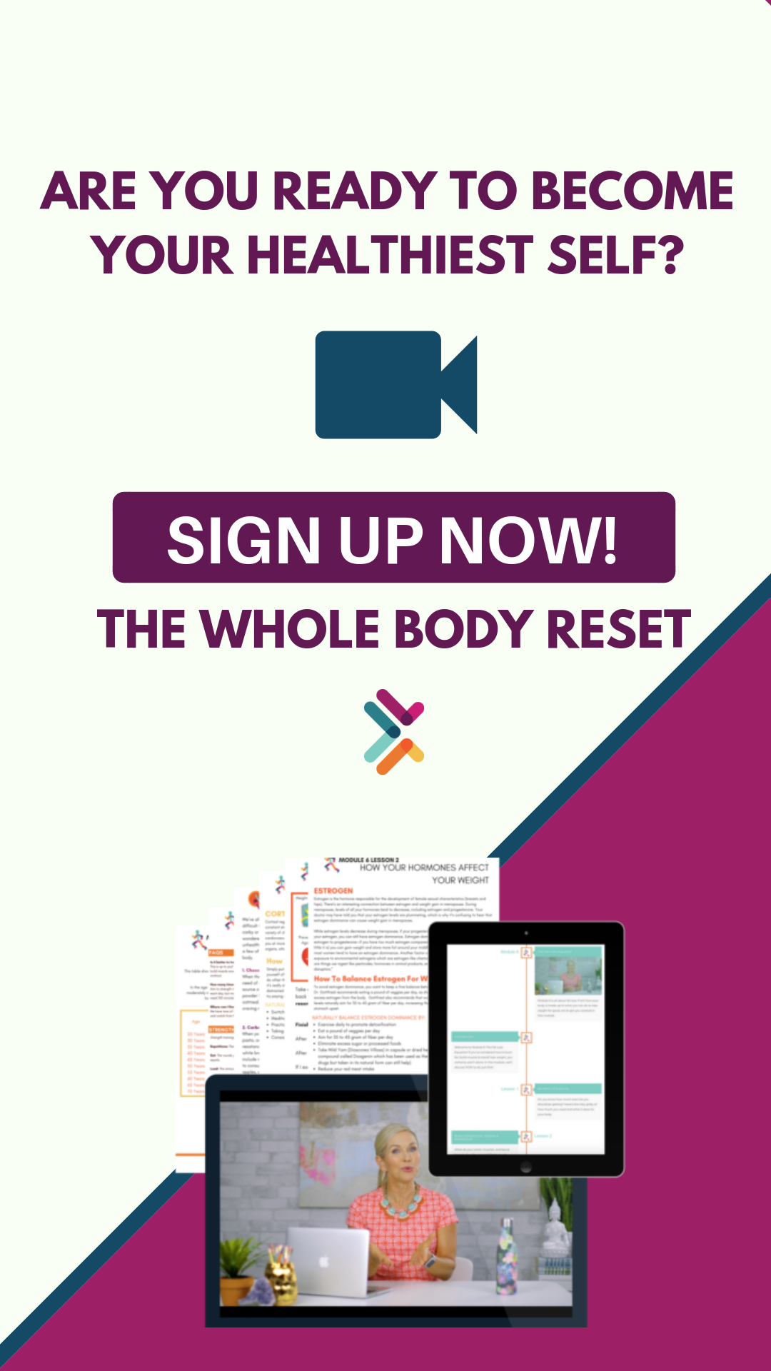 The Whole Body Reset Contains 7 Jam Packed Modules Loaded