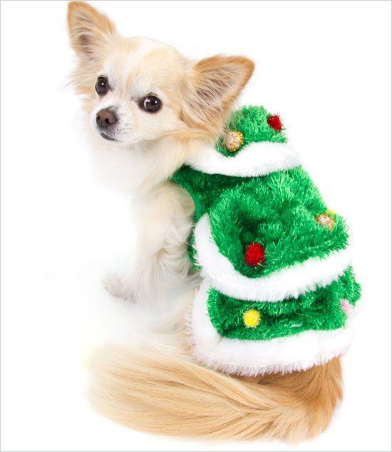 Christmas Tree Dog Costume Christmas Tree Dog Christmas Dog Costume Festive Dog