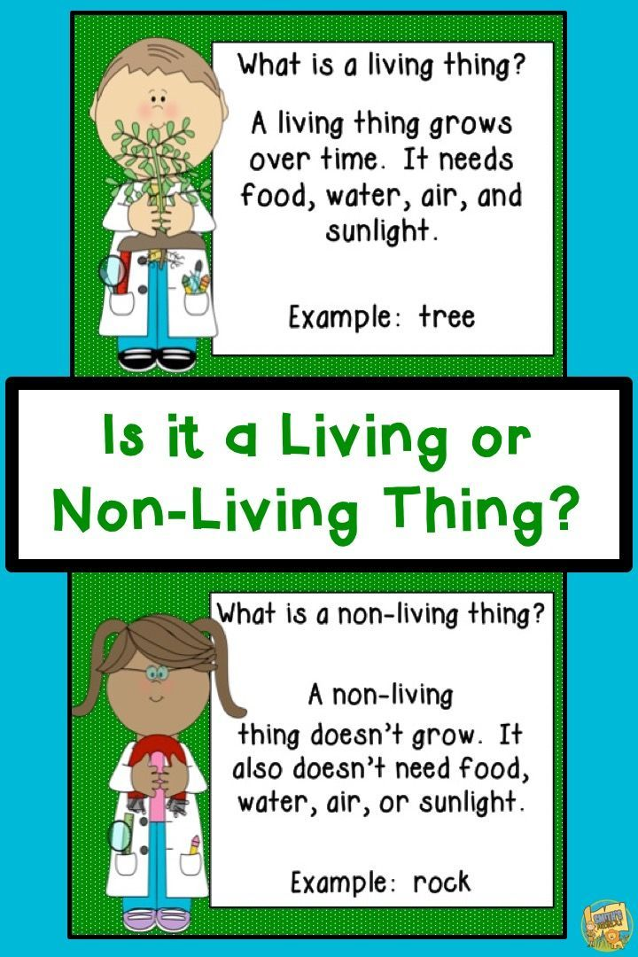 Living and Non-Living Things Grades K-2 Science Unit | Teacher\'s ...