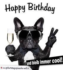 Geburtstagsspruche Mit Hundemotiven