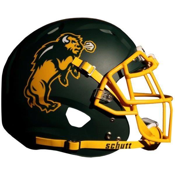 NDSU bison helmet