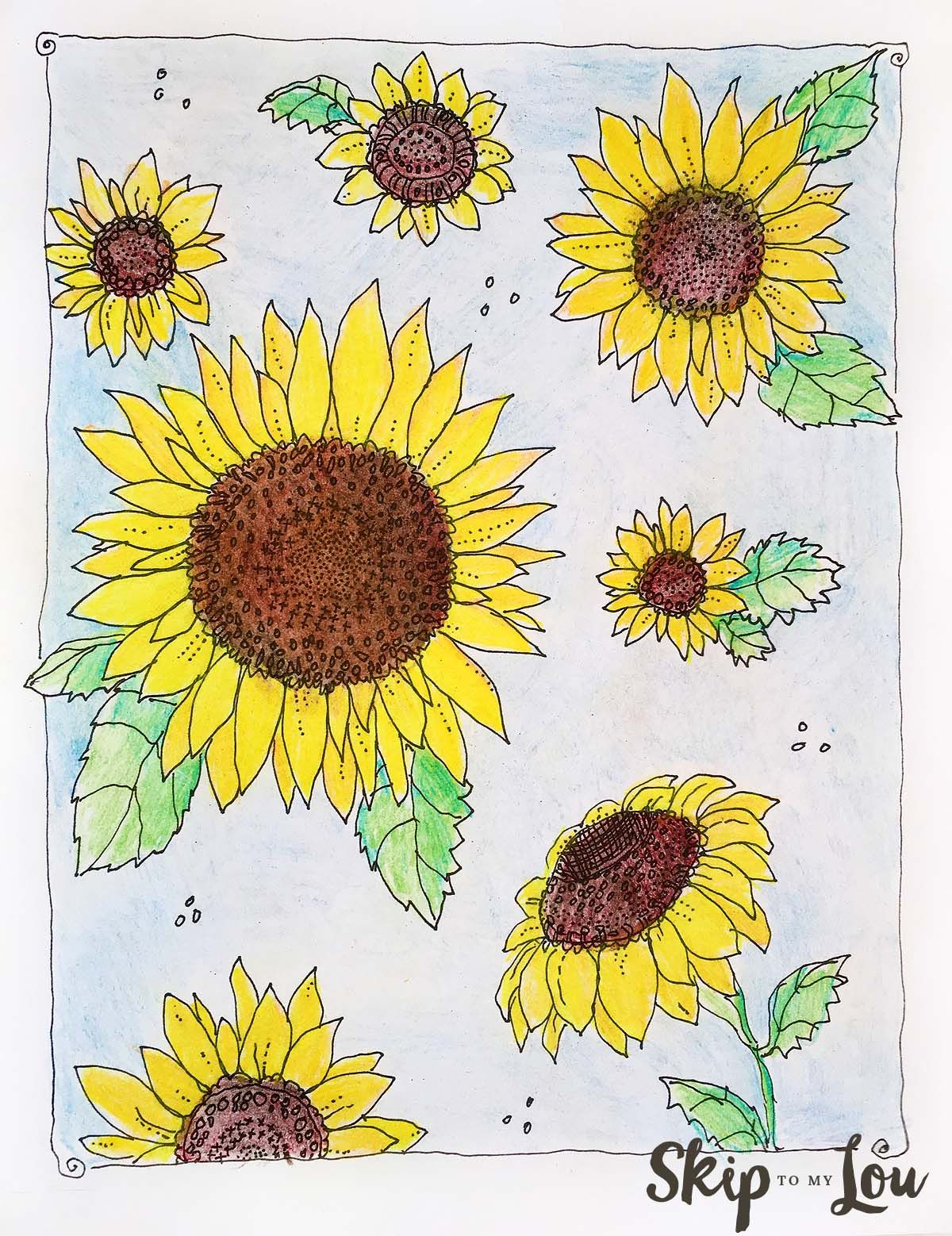 Free Coloring Page Kansas Day Sunflower Coloring Page Only