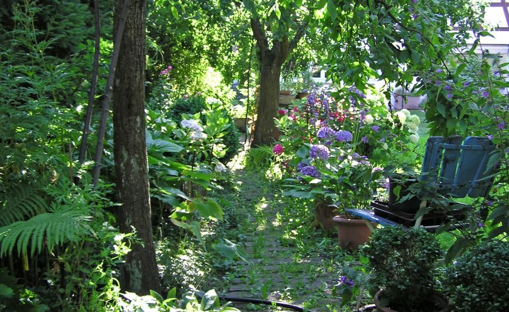 Schattengarten - Planen, Anlegen und Tipps Schattengarten - garten anlegen neubau kosten