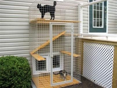 Magnificent Outdoor Cat Enclosure Cat Patio Catio Cats On Cats On Home Interior And Landscaping Analalmasignezvosmurscom