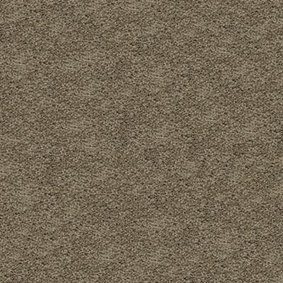 Mohawk Smartstrand Silk Gentle Essence 1v15 Residential Carpet Mohawk Carpet Carpet Modern Carpet