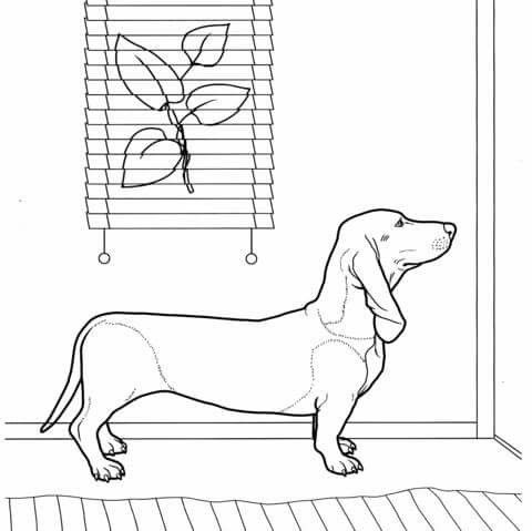 Basteln von Gina Malvorlagen tiere Hund zeichnungen