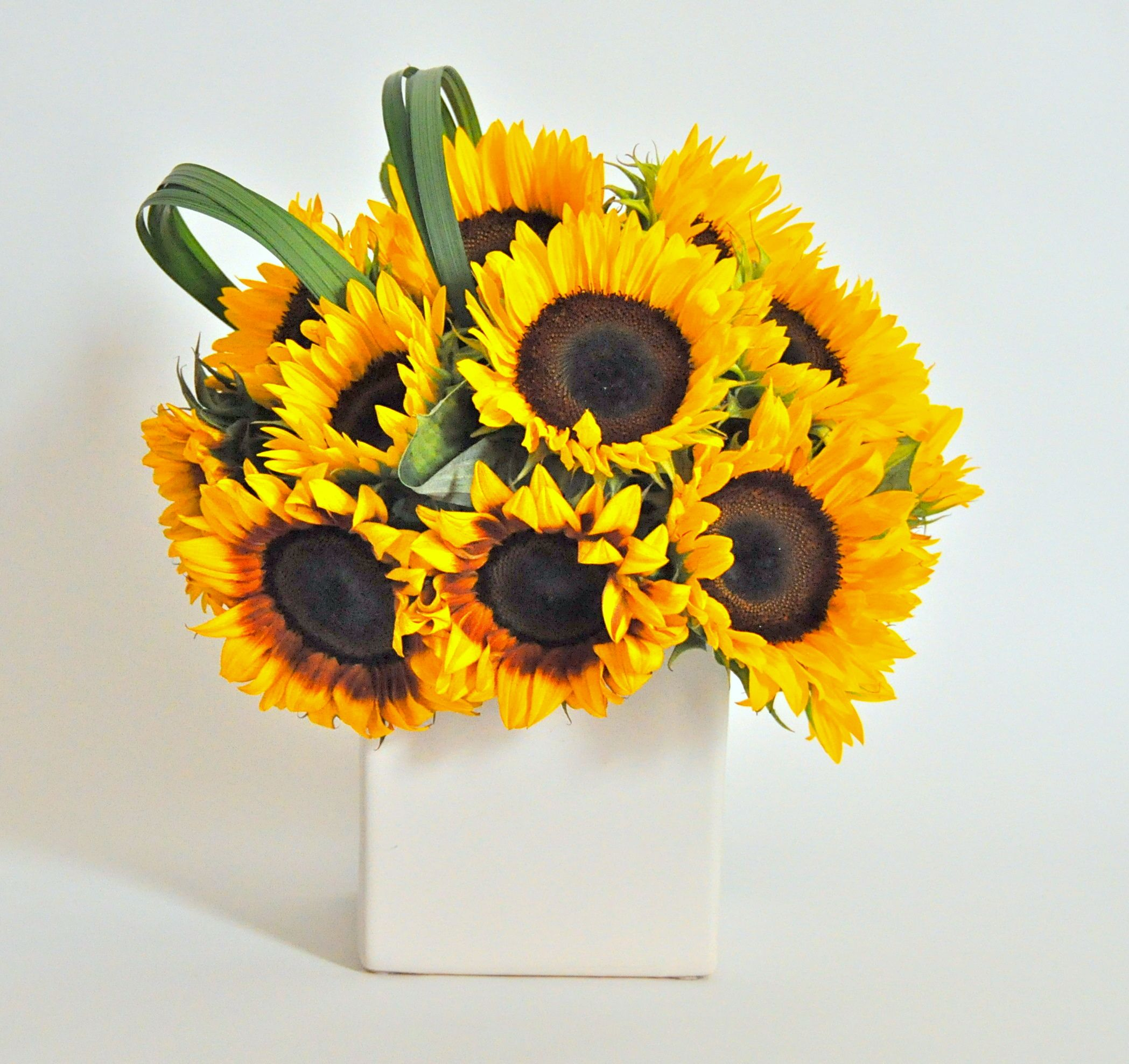 Sunflowers And Grass Loops Chic Flowers Flower Arrangements Modern Flower
