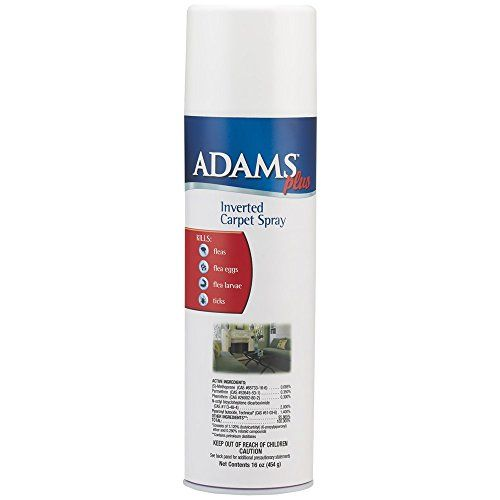 Adams Inverted Carpet Spray 16oz *** This Is An Amazon