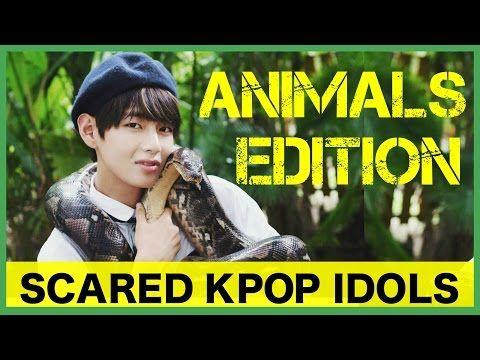 Scared K Pop Idols Ghosts Pranks Male Edition Youtube Kpop Idol Idol Kpop