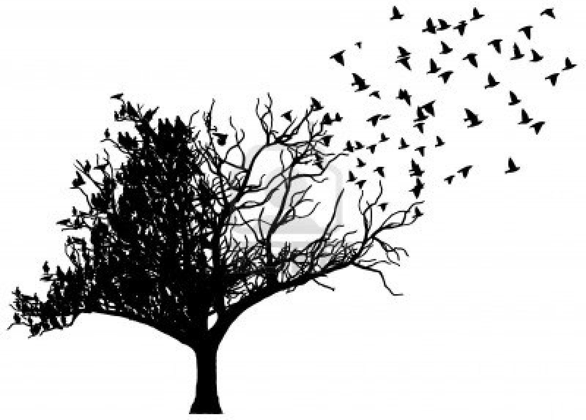 Image result for silhouette of crow dropping from a naked tree