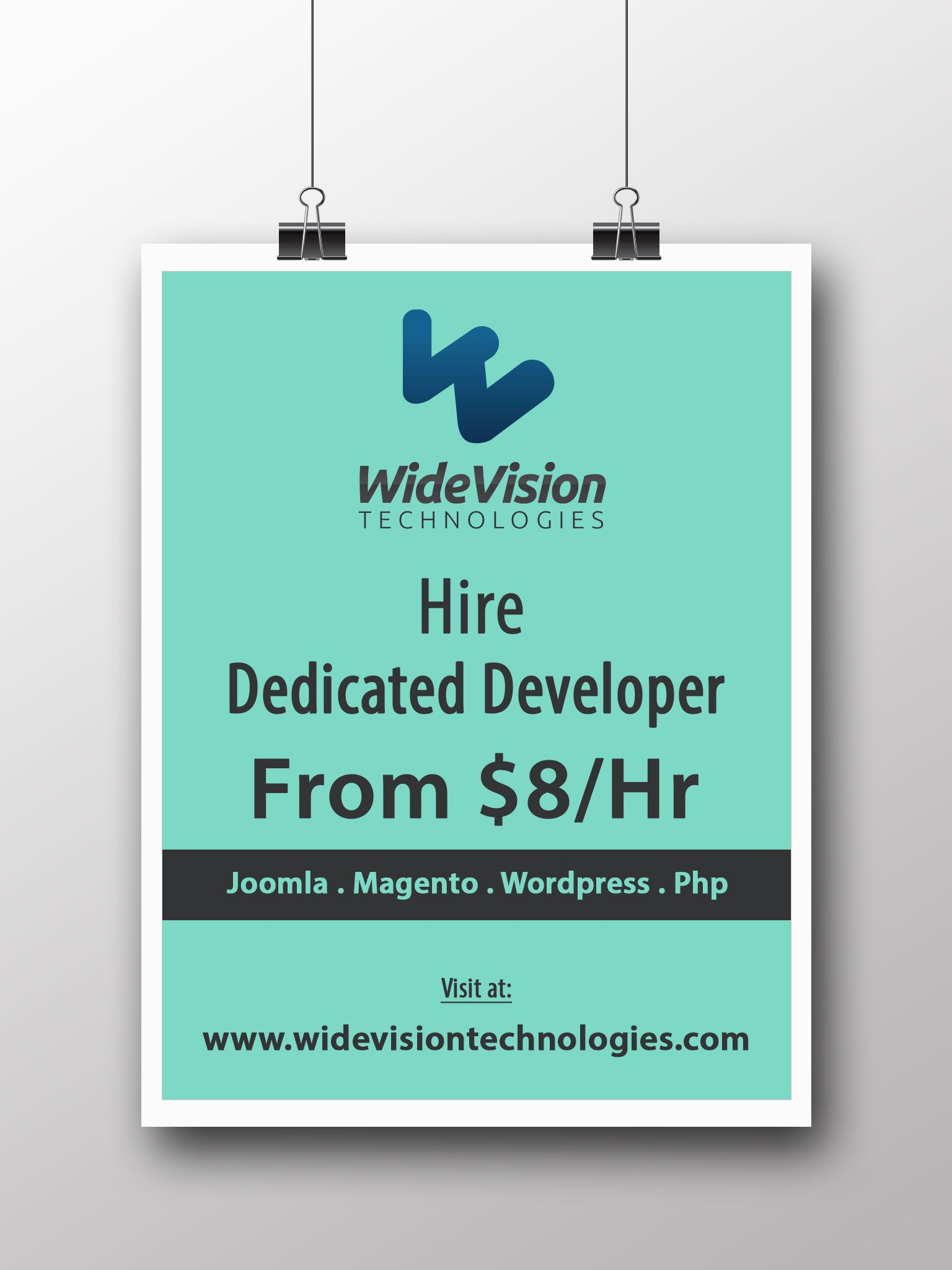 Hire Dedicated Developer Programmer from 8Hr !! We offers