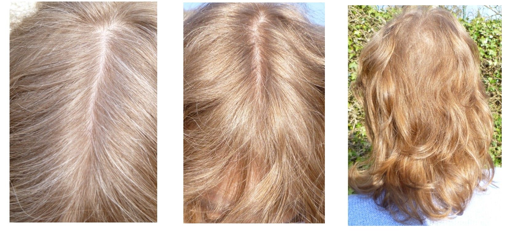 Colouring Your Hair Strawberry Blonde With Cassia And A Henna