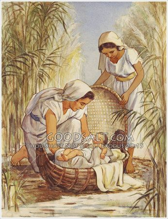 what is the name of moses mother in the bible