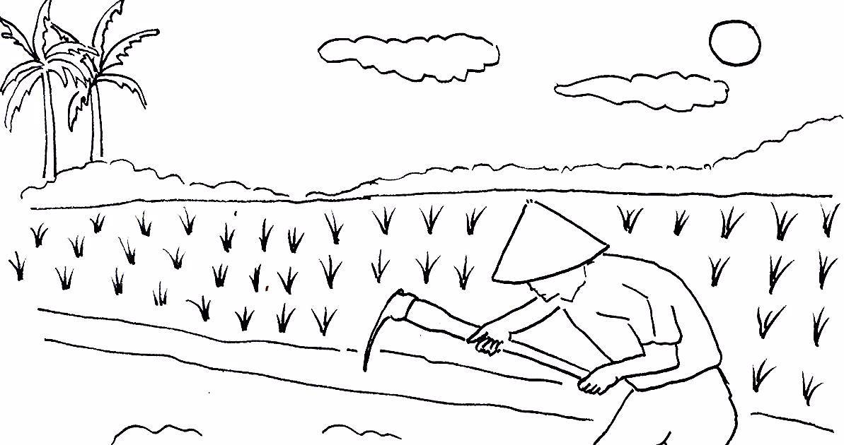 29 Sketsa Pemandangan Alam Ilustrasi Gambar Mewarnai Petani Buku