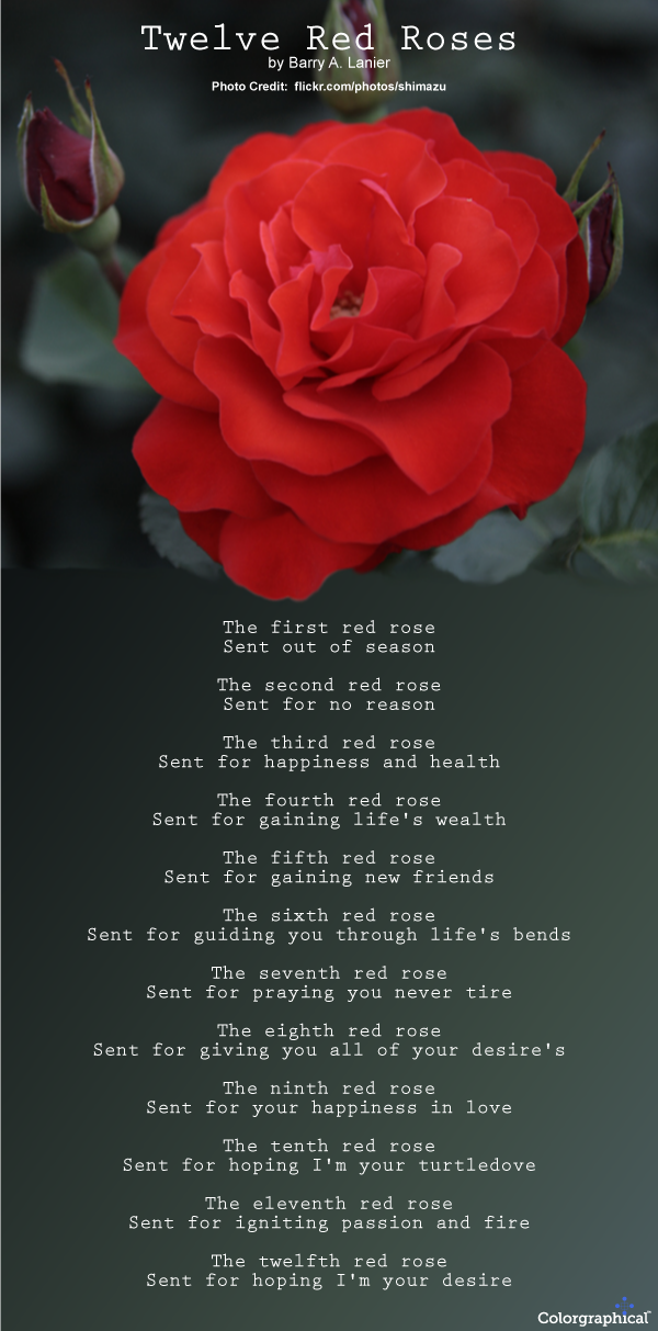 Roses Meaning and Symbolism Rose poems, Rose meaning