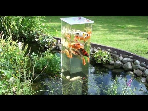Creating an inverted aquarium for pond don 39 t forget to for Koi pond insert