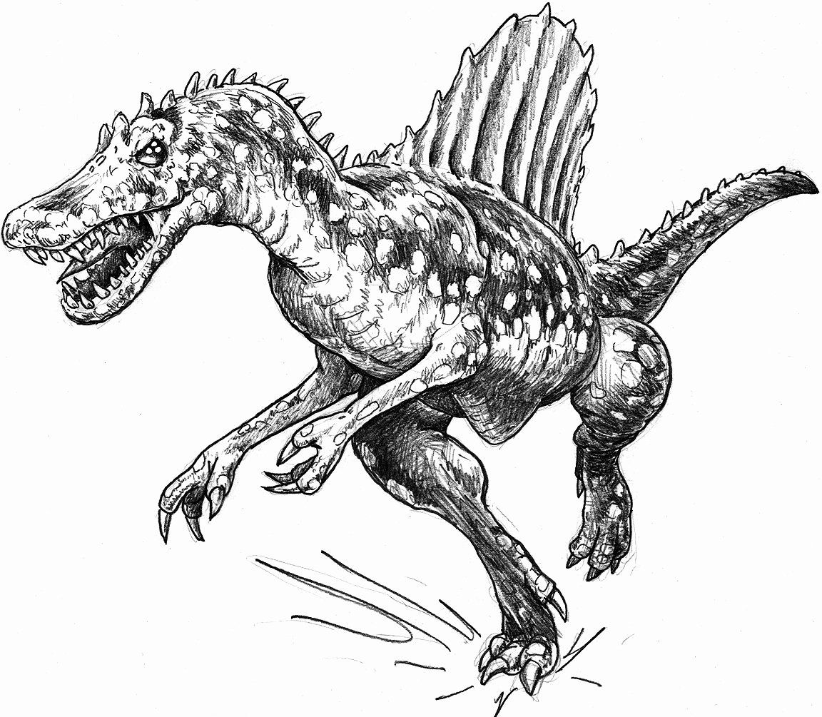 T Rex Coloring Pages Printable Fresh Spinosaurus Vs T Rex Coloring Pages In 2020 Printable Coloring Pages Coloring Pages Free Printable Coloring Pages