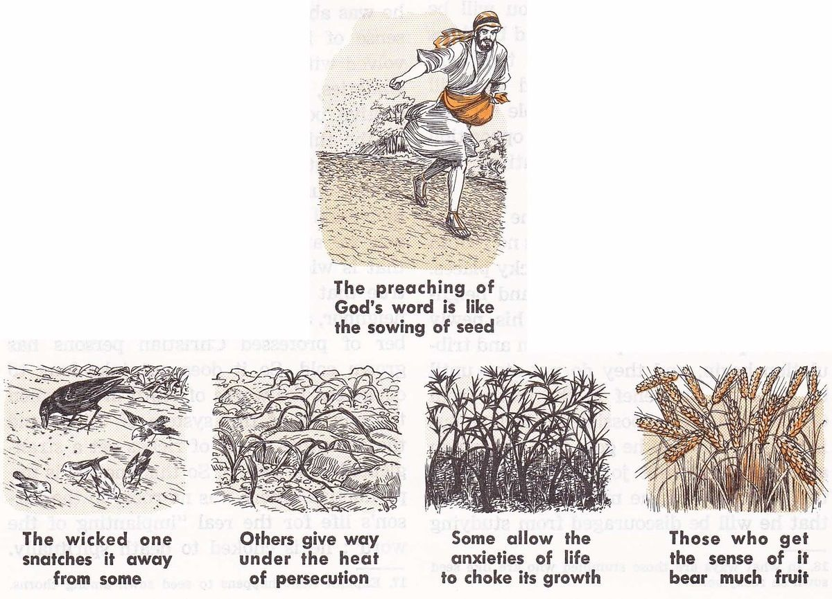 Parable of the Sower (Verson 2)