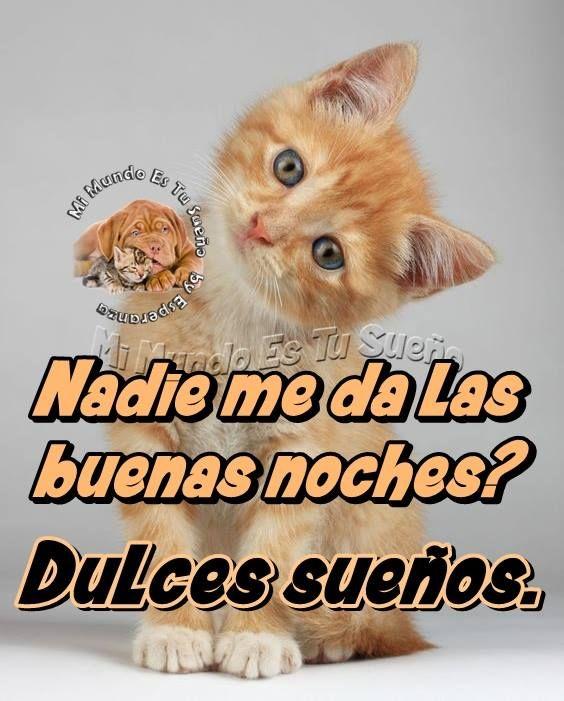 Dulces Suenos 059 Jpg 564 701 Imagenes De Buenas Noches