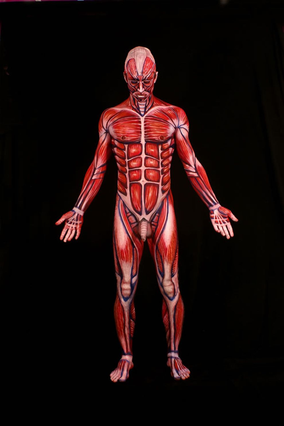 The human anatomy, painted onto real human bodies | Body Paint ...