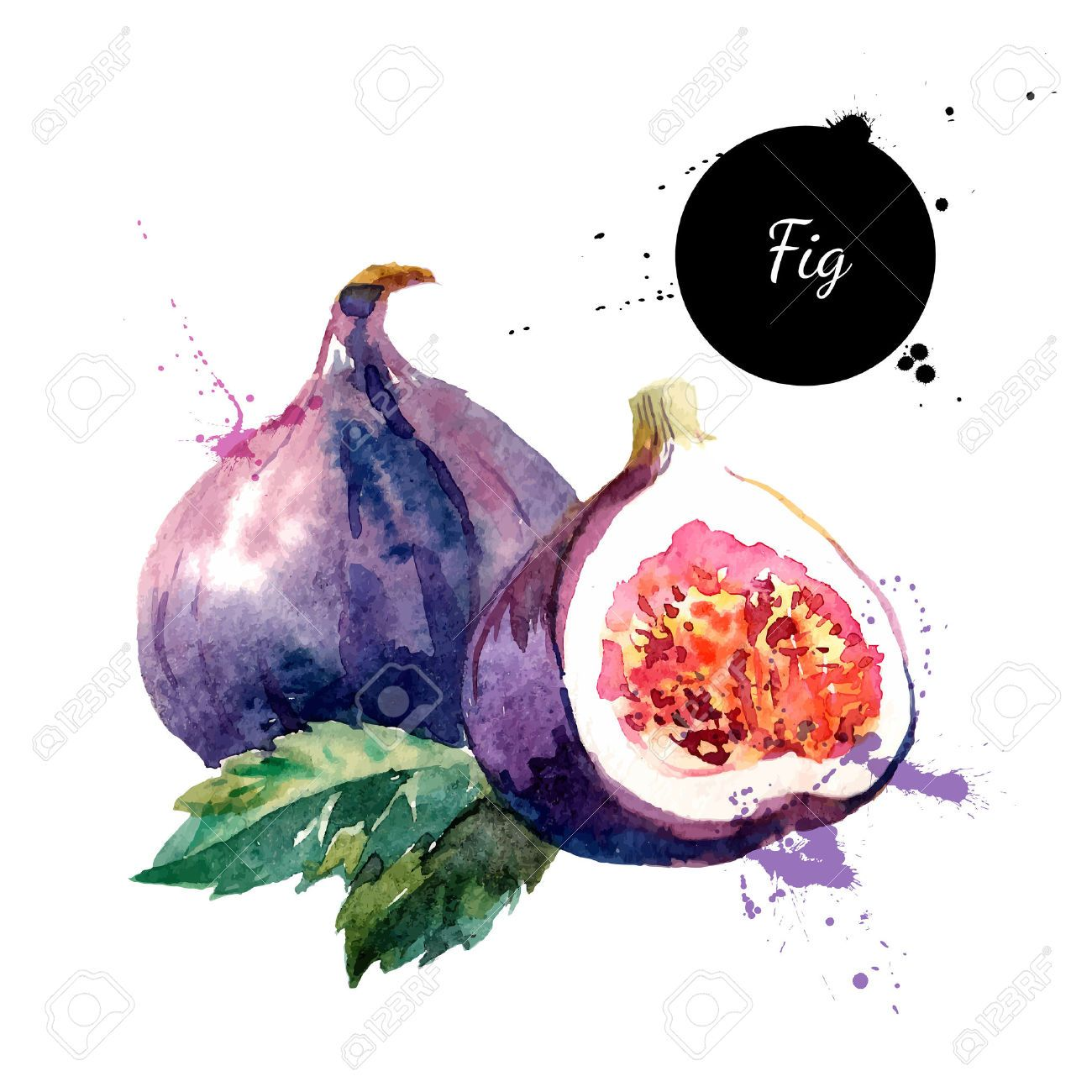 Free illustration watercolor pigment color free image - Watercolor Images Stock Pictures Royalty Free Watercolor Photos