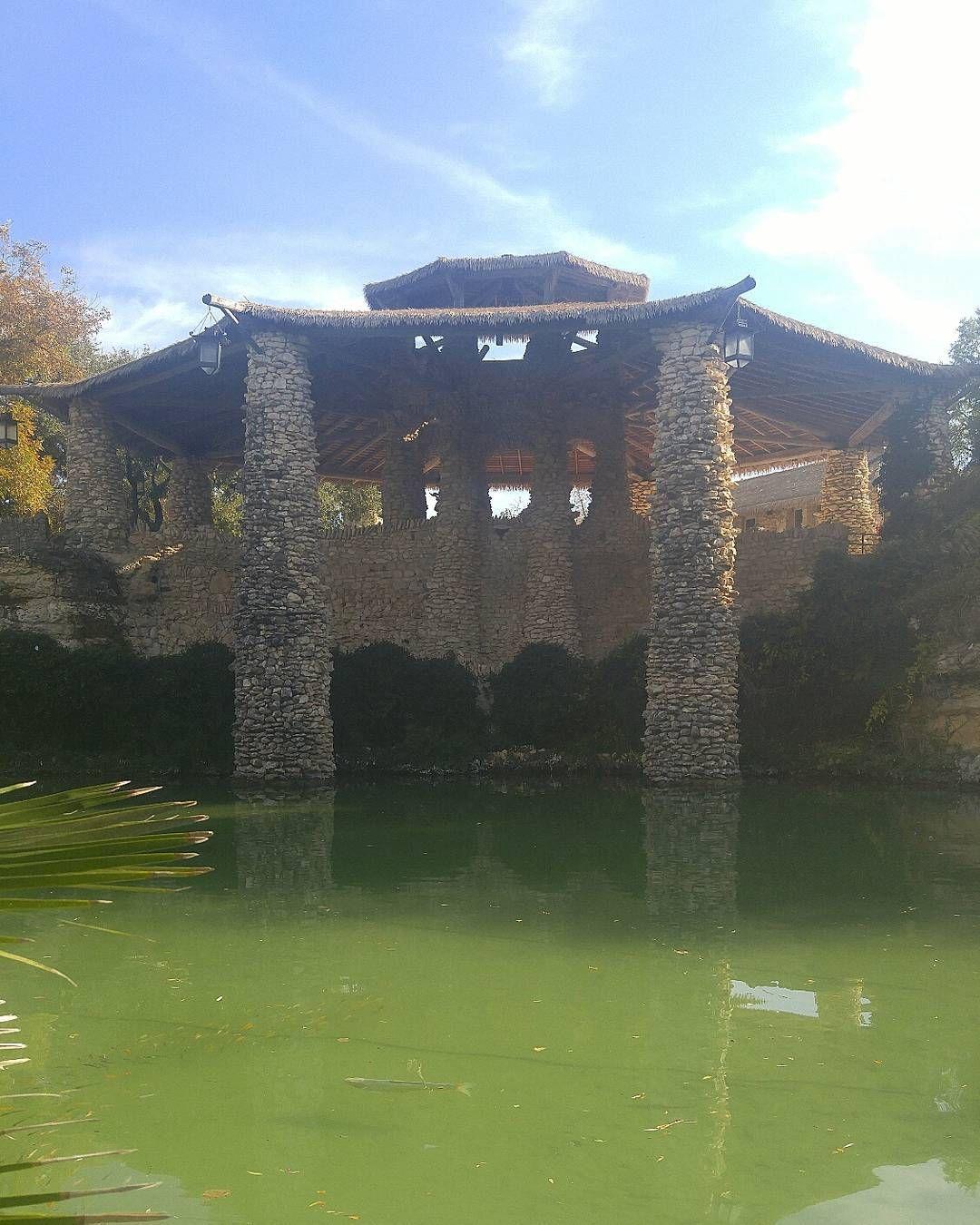 Japanese Tea Gardens in San Antonio Tea garden, Natural