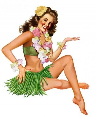 hawaii pin up