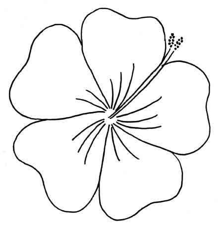 Free Embroidery Pattern Vintage Style Hibiscus Hawaiian Flower Drawing Embroidery Patterns Free Flower Outline